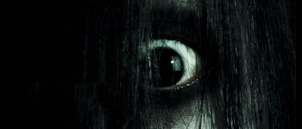 Crazed eye shrouded by black hair. ('The Grudge' movie poster)