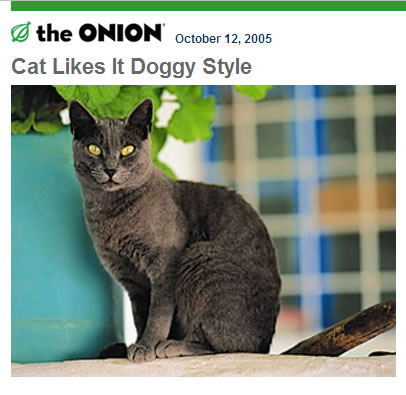 Cat whos likes it doggy style. (C) The Onion