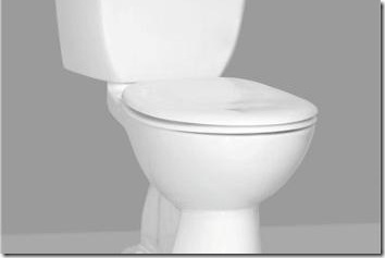One in Ten Broadband Users Surf on the Toilet