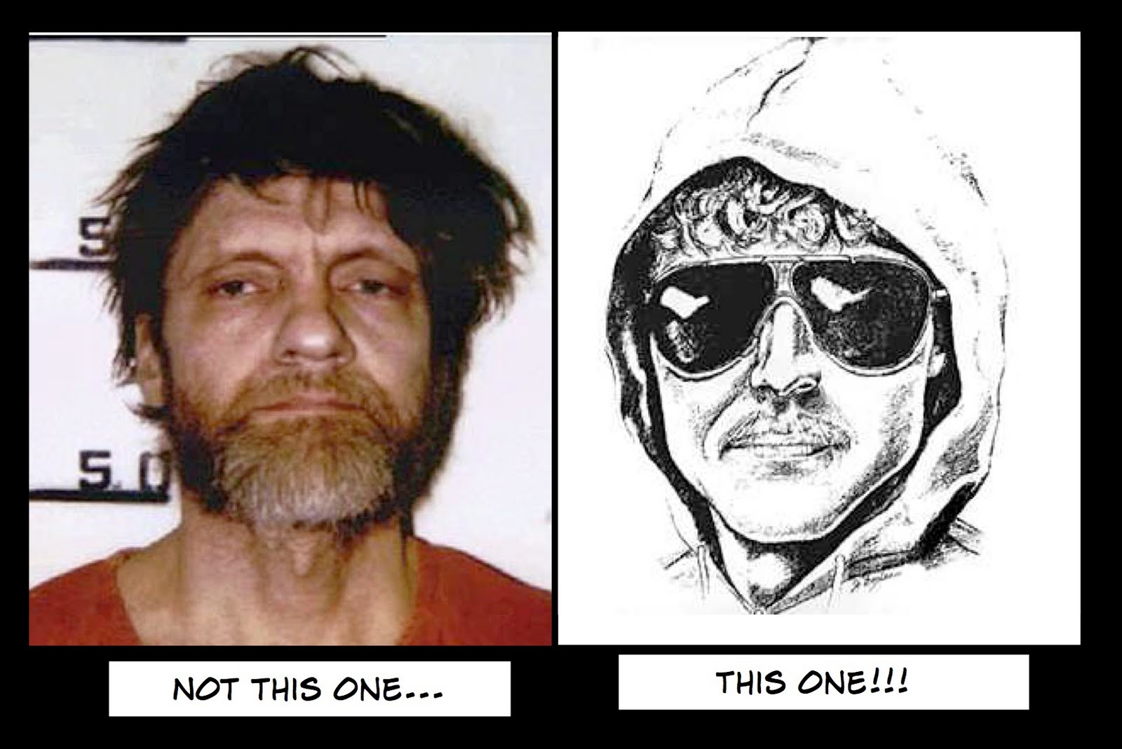 unabomber a life of a mind essay My brother, the unabomber and has distilled his experiences of life as the brother of the unabomber into an essay for kaczynski's essay is painful testimony.
