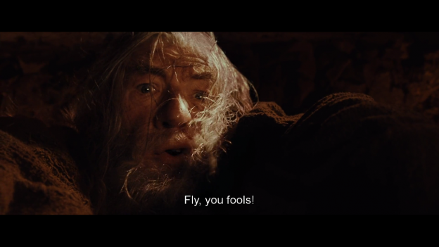 fly-you-fools