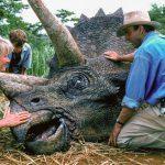 022f072f2016-1-1-triceratops