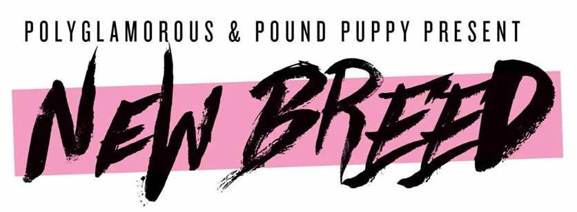 folsom-2019-new-breed.jpg